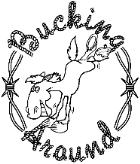 Bucking Around Western Wear Saddles Tack
