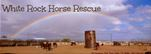 White Rock Horse Rescue
